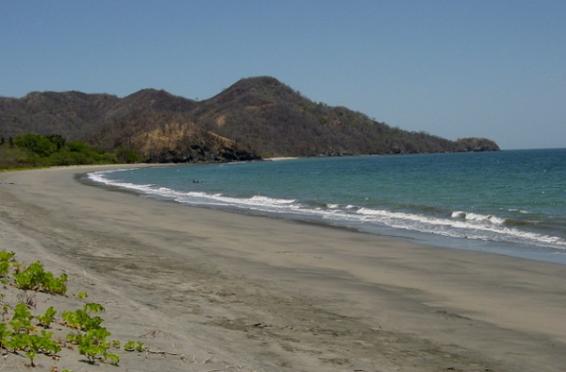 Matapalo, Guanacaste